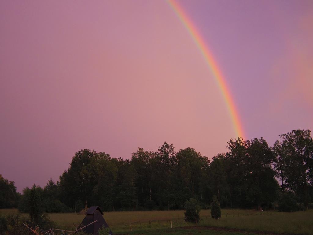 Regnbåge